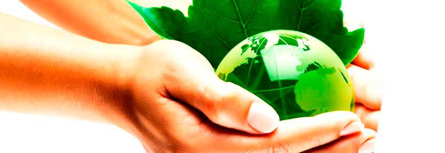 Auditor calidad Medio-ambiente. ISO-9001. ISO-14001.